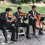 New York City, NY String Quartet | Highline String Quartet