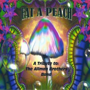 Raleigh, NC Allman Brothers Tribute Band | Eat a Peach: A Tribute to The Allman Brothers Band