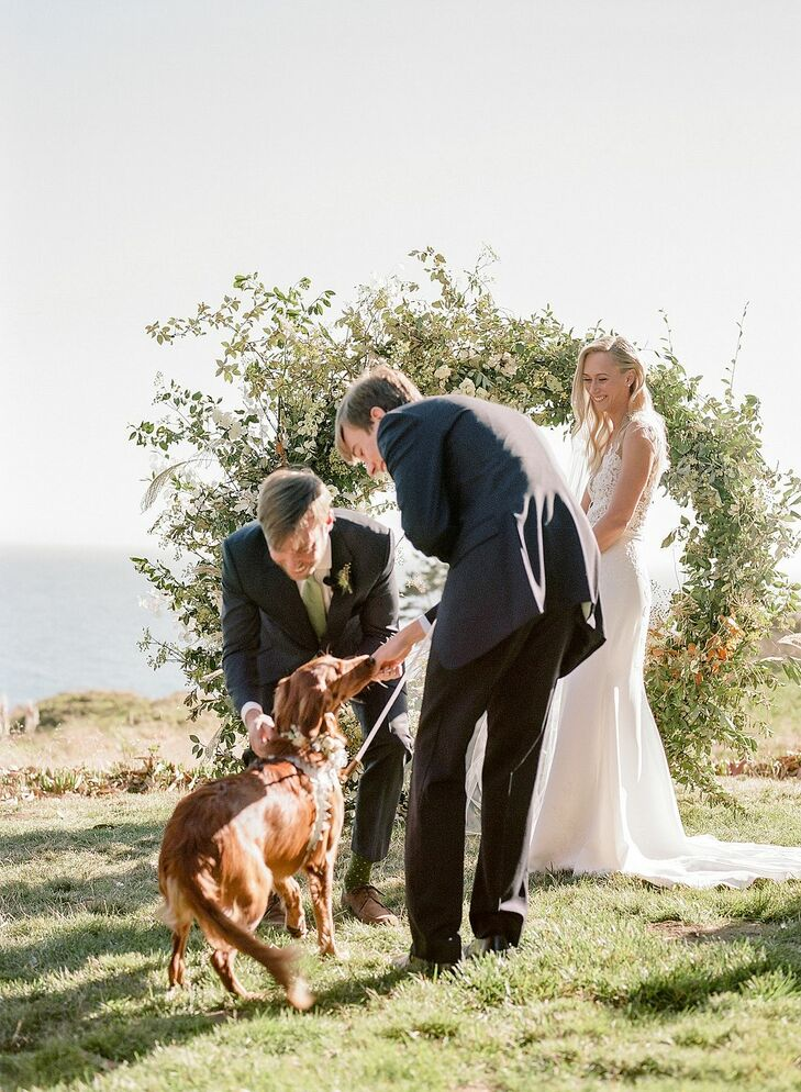 Dog Ring Bearer During Ceremony at Timber Cove Resort in Jenner, California