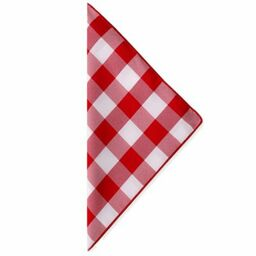 gingham poly check napkins in redwhite set of 4
