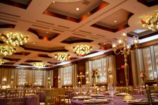 Wedding venues in indianapolis in the knot conrad indianapolis junglespirit Image collections